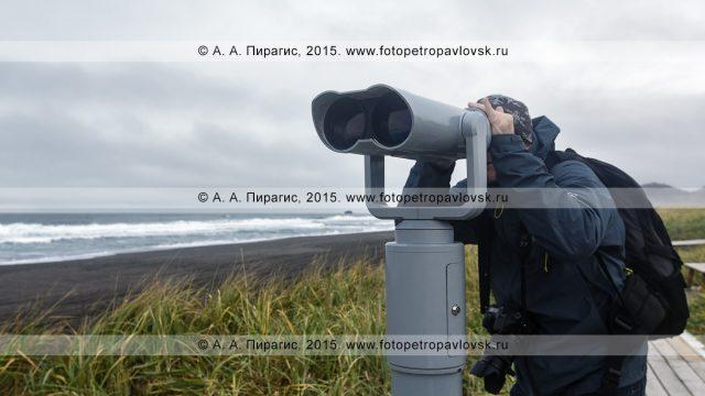 Трансфер Петропавловск-Камчатский — Тихий океан (Халактырский пляж)