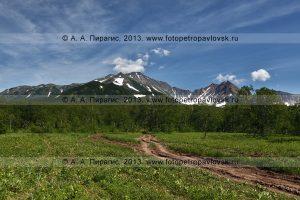 Лесная дорога на горный массив Вачкажец